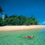 Low-Isles-snorkel